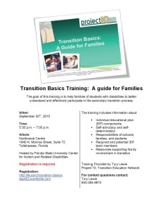 Transition Basics Flyer - 9.30tally